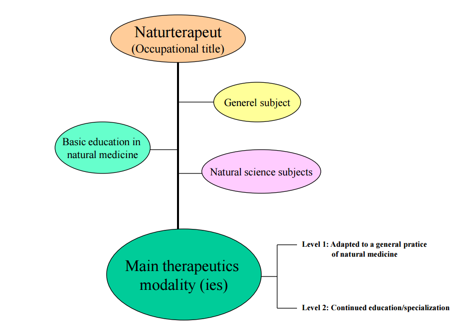 Model of education in natural medicine